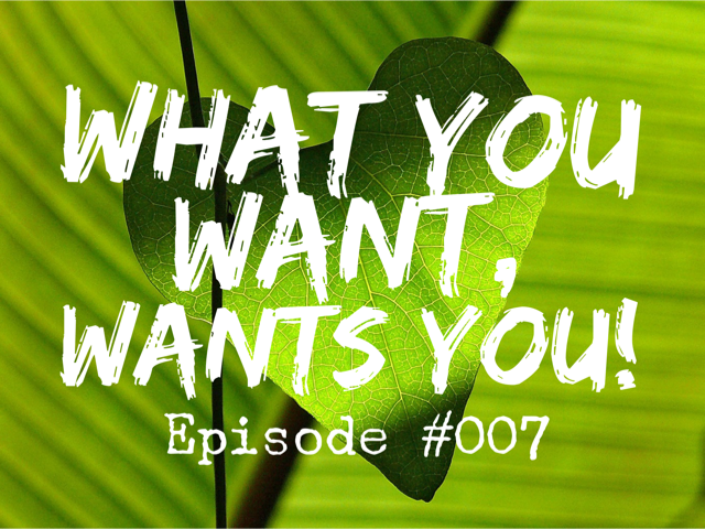 007 – What You Want, Wants You