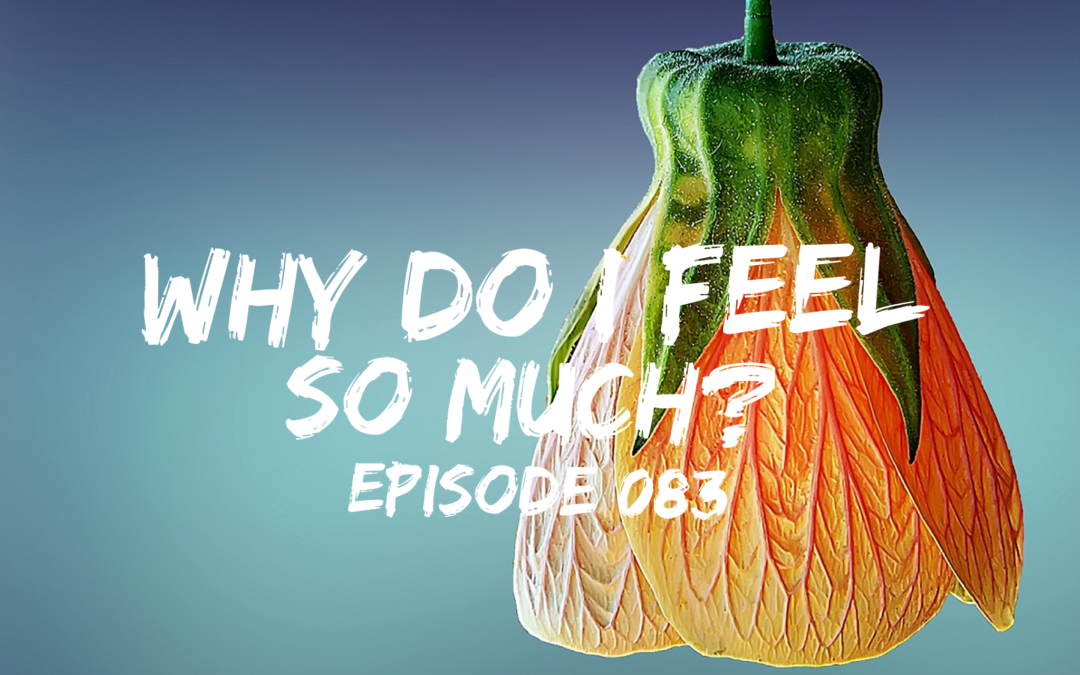 083 –  Why do I FEEL so much?