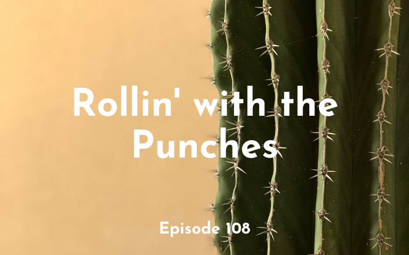 108 – Rollin' with the Punches
